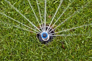 Calgary Lawn Maintenance: Benefits of an Underground Sprinkler System in Spring – Do's and Don'ts for a Healthy Lawn