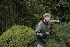 Tips for Choosing the Best Landscape Maintenance Provider