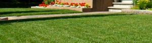 Commercial Landscaping in Calgary