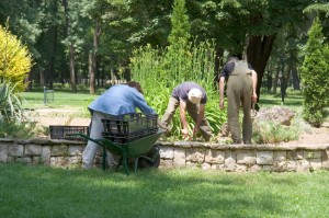 Spring Clean Up Landscaping