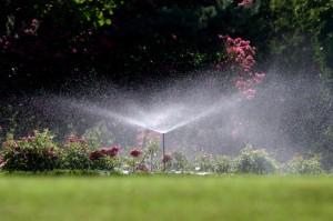 Best Aboveground Sprinklers