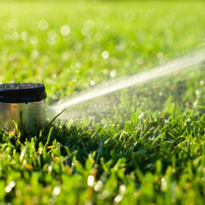 When Should I Start Up My Underground Irrigation?