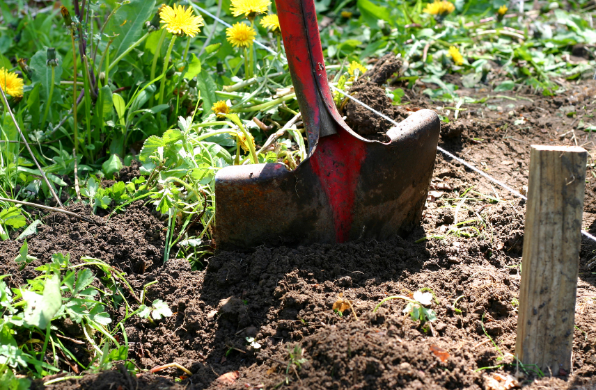 Mirage landscaping inc the importance of calling before for The importance of landscaping