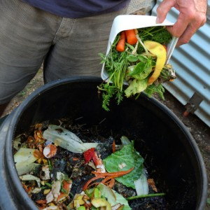 How Do I Use My Compost