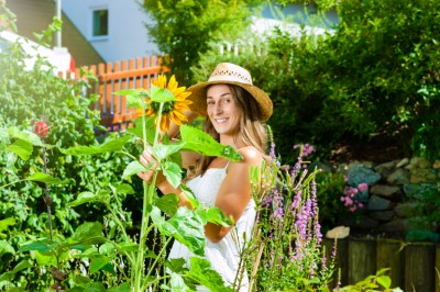 Keeping Your Landscaping Looking Good in Hot Weather