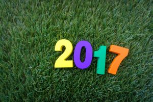 Five New Year's Lawn Care Resolutions