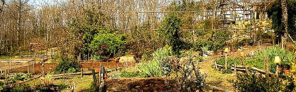 Five Handy Tips for Landscape Maintenance This Spring
