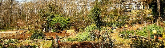Spring Shrub and Perennial Bed Preparation: Calgary Landscaping By Mirage
