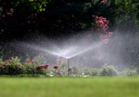 Best Aboveground Sprinklers: Landscaping in Calgary By Mirage