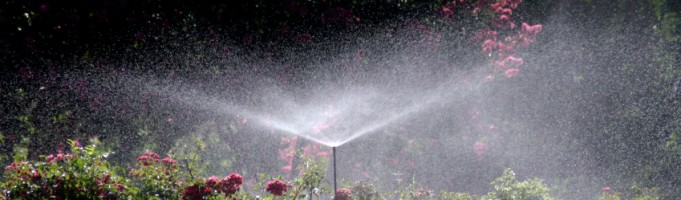 Different Types of Sprinklers for Your Home or Business Landscaping