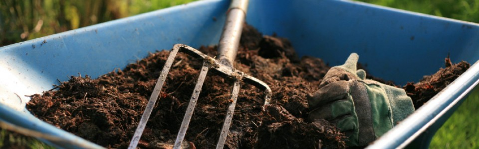 Composting for the Amateur: Mirage Landscaping in Calgary