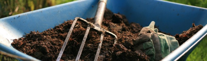 Thinking of Composting? Here's Why it's a Great Idea!