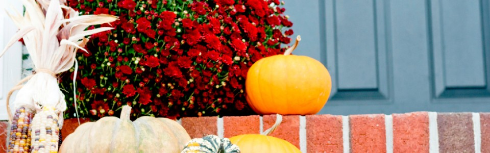 Cool and Easy Outdoor Halloween Decorations