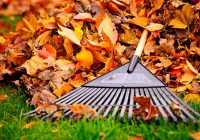 Schedule Your Fall Clean Up With Mirage Landscaping