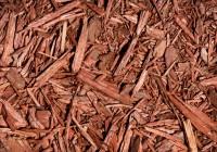 Mulch is Your Garden's Warm Winter Coat