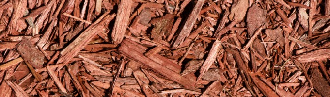 Mulch is Your Garden's Warm Winter Coat