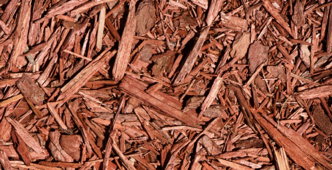 Mulch Extends the Life of Your Calgary Landscaping
