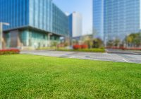 Professional Commercial Landscaping is a Boon for Your Business
