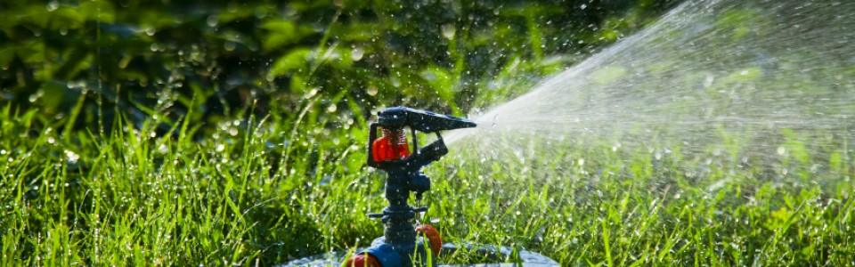 Why Should I Install Underground Irrigation in Calgary?