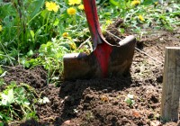 The Importance of Calling Before You Dig