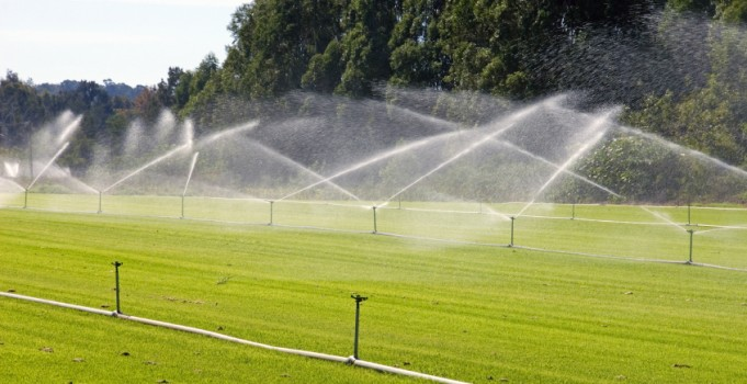 Water-Saving Strategies for Commercial Landscaping Design