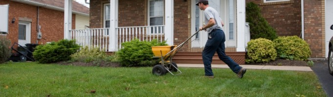 Why You Should Fertilize in the Fall