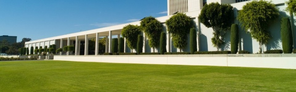Year-Round Commercial Landscaping Services