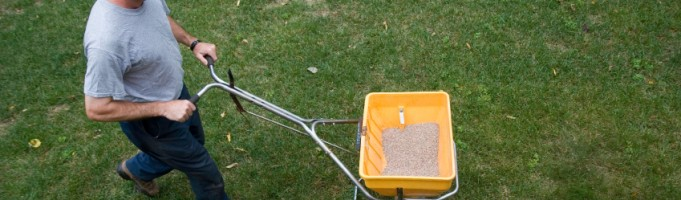 Benefits of Fall Fertilization: Landscaping in Calgary