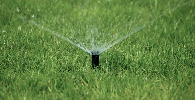 Calgary Irrigation Maintenance: Common Underground Sprinkler Mistakes