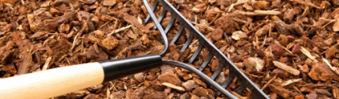 Mirage Landscaping: What is Mulch and How Do I Use It? Part 1