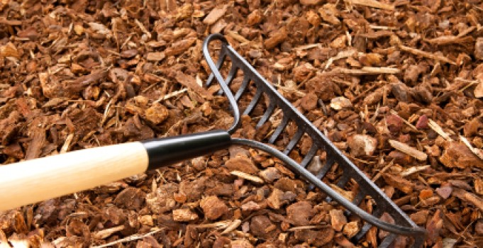Use Mulch to Protect Your Shrubs and Plants This Winter