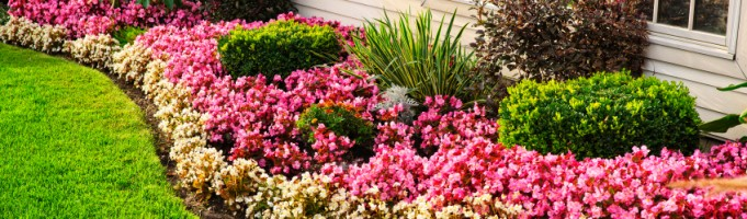Calgary Landscaper Cost Planning Tips